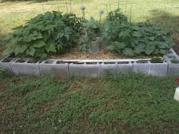 Raised Garden Beds Made From Concrete Blocks How To Make A Cinder