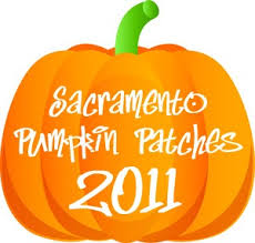 Old Auburn Pumpkin Patch by Sacramento Pumpkin Patch Guide Sacramento Sidetracks