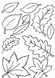 Small Fall Leaves Coloring Pages Inside