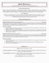 Child Care Resume Objective New Examples 0d Good Looking Samples