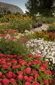 Pumpkin Patch Denver Botanic Gardens by 116 Best Denver Botanical Gardens Images On Pinterest Fused