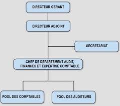 organigramme fonctionnel afric auditec cabinet d audit et d