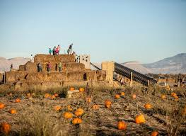 Best Pumpkin Patch Snohomish County by Best Pumpkin Patches Jetsetter