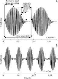 Sink Florida Sink Acoustic Tab by Simultaneous Measurement Of Metabolic And Acoustic Power And The