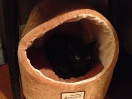 Armarkat Cat Bed by Armarkat Cave Shape Pet Cat Beds For Cats And Small Dogs