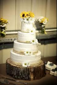 Rustic Daisy Cake
