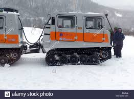 snow cat stood by a snow cat on a back country skiing expedition in