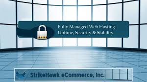 Hosting Tips ~n~ Tricks Archives - StrikeHawk ECommerce, Inc. Ecommerce Web Hosting In India Unlimited Which Better For A Midsize Ecommerce Website Cloud Hosting Or Ecommerce Package Videotron Business Reasons Why Website Need Dicated Sver And Free Software When With Oceania Essentials Online Traing Retail Infographics E Commerce Trivam Solutions Indian Company Chennai Rnd Technologies Pvt Ltd Ppt Download Fc Host