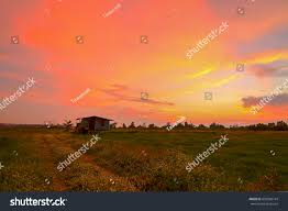 100 Banglamung Cottage Sunset Vines Thailand Stock Photo Edit Now