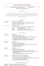 Resume Of Lawyer In English Cover Letter Examples