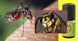 insekten vertreiben mittel gegen mücken wespen co