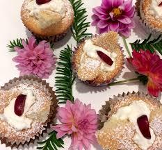 Jillian Abbotts Australian Recipe For Butterfly Cakes