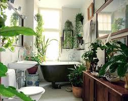 pflanzen im badezimmer badewanne spüle spiegel pflanzen im