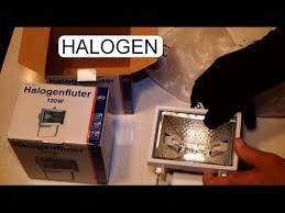 insert t3 halogen light bulb to floodlight