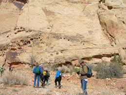 Trough Cross Bedding by Navajo Sandstone