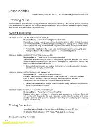 Internship Resume Examples Free Inspirational Template Sample Malaysia
