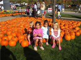 Noblesville Pumpkin Patch by Pumpkins And Treats For A Sweet Cause Riley Hospital For Children