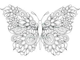 Colouring In Pictures Of Butterflies Simple Butterfly Coloring Pages Free Printable Adult With Monarch Page