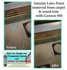 How Remove Paint From Carpet by How To Clean Latex Paint Spilled On Carpet Carpet Vidalondon