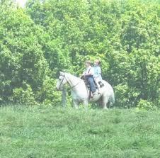 Pumpkin Vine Trail Ride by Do Amish Ride Horseback