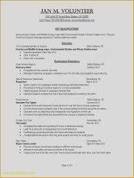 Ten Common Misconceptions | Realty Executives Mi : Invoice ... How To Write A Resume 2019 Beginners Guide Novorsum Security Guard Sample Writing Tips Genius R03 Jessica Williams Professional Cv Template For Ms Word Pages Curriculum Vitae Cover Letter References Icons 5 Google Docs Templates And Use Them The Muse 005 Free Ideas Gain Amazing Modern Cv Professional Cv Mplate Free Download Word Format Perfect Cstruction Examples Included Top 14 Best Download In Great 32 For Freshers Format Ms Tutorial To Insert Picture In 20 Premium 26 Creating A Create