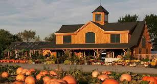 Pumpkin Picking Richmond by Rhode Island U0027s Best Pumpkin Patches Wpro Am