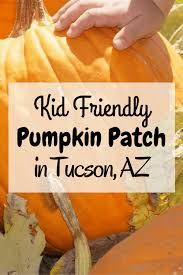 Macdonald Ranch Pumpkin Patch Hours by Marana Pumpkin Patch A Kid Friendly Pumpkin Patch Giveaway