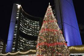 Eby Pines Christmas Trees Hours events in toronto the story of the toronto city hall christmas tree