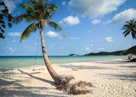 100 Playa Blanca Asia Blanca Con Palmeras En El Da Soleado En