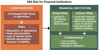 Dynamic Value Annual Financial Risk Environmental And Social Risk For Financial Institutions For