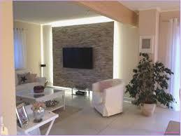 wohnzimmer steinwand tv caseconrad