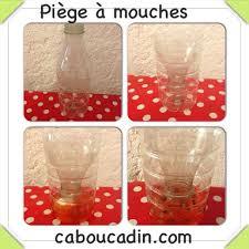 piege a mouche exterieur comment fabriquer un piège à mouches