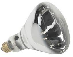 Infratech Heat Lamp Bulb by Sli Lighting R40 250 Watt Heat Lamp Clear R40 Shape 5
