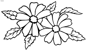 Pictures Of Flowers To Colour In