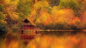 Cabin The Lake WallDevil