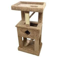 Amazoncom New Cat Condos Premier Solid Wood Cat Play Gym Brown