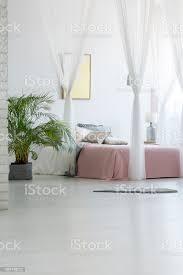 graue wolldecke gesetzt auf dem boden in weiße schlafzimmer innenraum mit grünpflanze moderne plakat aufhängen an die wand und doppelbett mit rosa