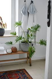 unser privater kleiner dschungel badezimmer