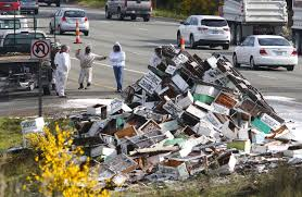 Truck Carrying Millions Of Bees Tips Over On Highway - The ... Arnia Hive Monitors On Twitter Apimondia2017 Tech Tour Bee Lorry Bee Busters Truck Moving Bees Is Not Easy Slide Ridge Notes Video Driver Cited In Truck Crash 6abccom Brown Cat Bakery Transport Meet The Biobee Youtube Why Are So Many Trucks Tipping Over The Awl 14 Million Spilled I5 Everybodys Been Stung Honeybees Travel 1000 Miles To Pollinate Nations Crops Bbj Today 2018 Hino 817 4x4 Flat Deck