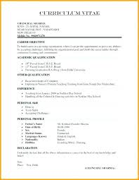 Sample Resume Format Declaration In Example It Cover