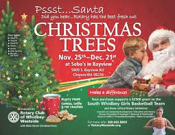 Fresh Christmas Trees Types by Rotary Club Of Whidbey Westside Whidbey Island Christmas Tree