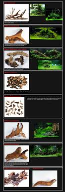Best 25+ Aquascaping Ideas On Pinterest | Aquarium, Aquarium Ideas ... How To Set Up An African Cichlid Tank Step By Guide Youtube Aquascaping The Art Of The Planted Aquarium 2013 Nano Pt1 Best 25 Ideas On Pinterest Httpwwwrebellcomimagesaquascaping 430 Best Freshwater Aqua Scape Images Aquascape Equipment Setup Ideas Cool Up 17 About Fish Process 4ft Cave Ridgeline Aquascape A Planted Tank Hidden Forest New Directly After Setting When Dreams Come True