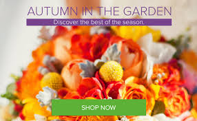 Pumpkin Farm Maryland Heights Mo by Riley U0027s Florist In St Louis Free Local Delivery U0026 No Service Fees