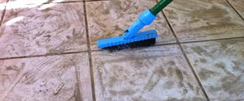 Steam Mop For Tile And Grout by Steam Experts Carpet Cleaning Whitby Carpet Cleaning Call 905