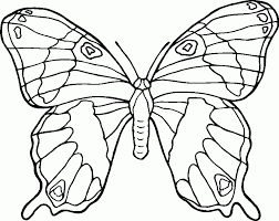 Animal Coloring Pages Butterfly