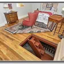 Interior Crawl Space Access Door Gallery Doors Design Ideas