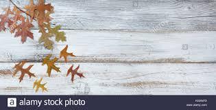 Seasonal Oak Leaf Decorations Falling From Branch On Rustic White Wooden Boards