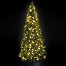 Slim Pre Lit Christmas Trees 7ft by Pre Lit Slim Manitoba Spruce Christmas Tree 2 1m 7ft Amazon