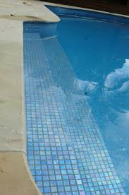 Pool Waterline Tiles Sydney by 18 Best Pool Tiles Images On Pinterest Pool Tiles Iris And