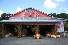 Sarasota Pumpkin Festival Location by Bradenton U0027s Hunsader Farms Pumpkin Festival A Carnival Of Fall